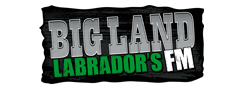 CFLNFM — Big Land Labrador's FM